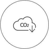 icon eco02